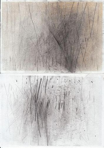 Hallveig Ágústsdóttir. I really like the layering of mark-making from the back ground to the fore ground, as this progression alone (when looked at from a distance, I assume) represents a forest on a foggy winter morning/evening.