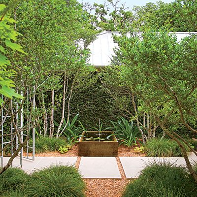 53 best Austin Landscape images on Pinterest | Succulent landscaping ...