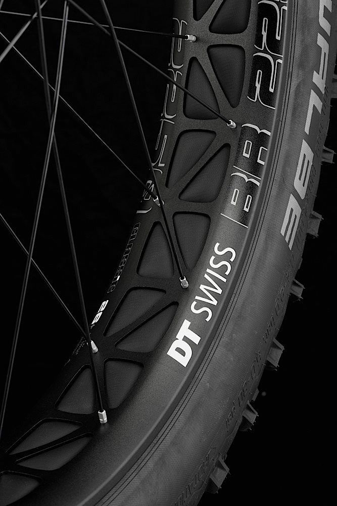 fatbike wheel - dt swiss