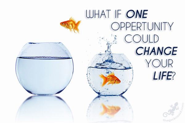 What if one oppertunity could change your life? #change #life #one #oppertunity #quotes  © 2016 The Gecko Said – Beautiful Quotes