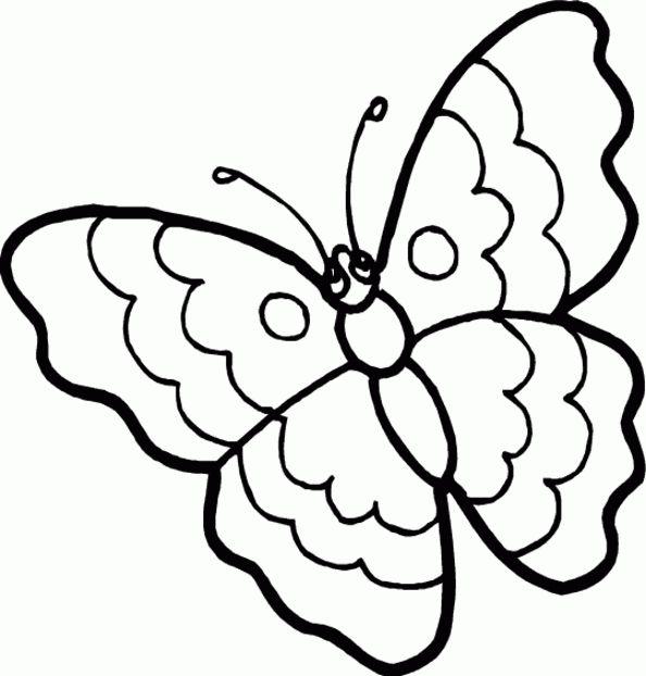 Ten Besser Schmetterling Malvorlage Begriff 2020 Halaman Mewarnai Bunga Menggambar Kupu Kupu Kupu Kupu