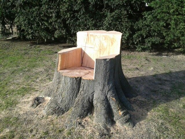 I carved this seat from a Beech tree stump following the felling of the tree