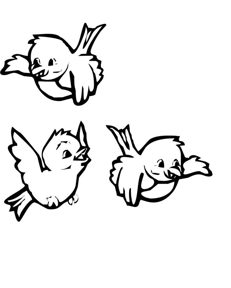 pictures three birds flying coloring for kids