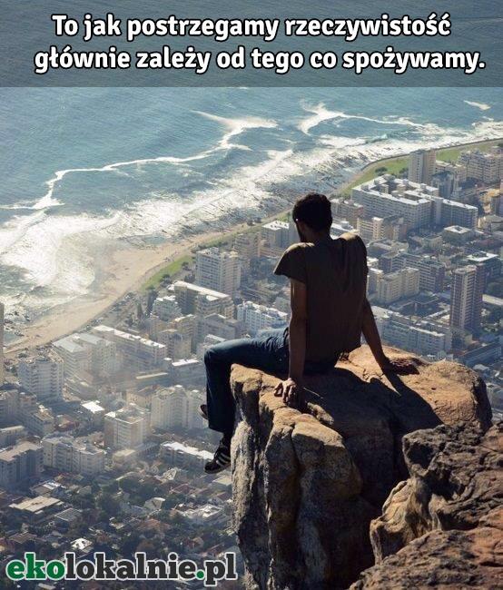 Jeśli się zgadzasz udostępnij na swojej tablicy - http://ekolokalnie.pl