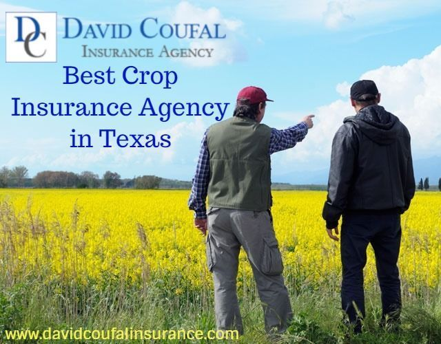 David Coufal Insurance Agency An Independent Insurance Agency