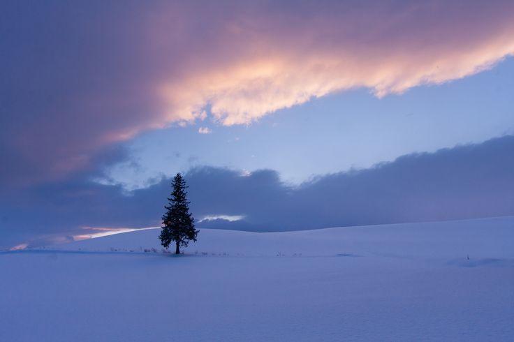 Biei, Hokkaido in winter