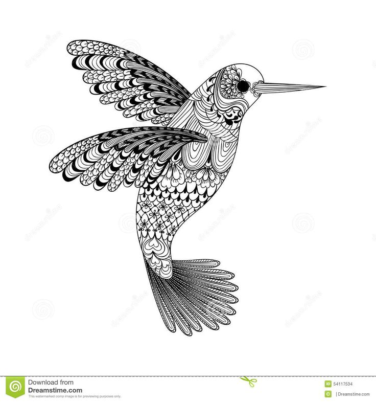 Zentangle Stylized Black Hummingbird. Hand Drawn - Download From Over 41 Million High Quality Stock Photos, Images, Vectors. Sign up for FREE today. Image: 54117534