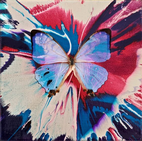 Damien Hirst - Uplift; Creation Date: 2008; Medium: butterfly and household gloss on canvas; Dimensions: 5.98 X 5.98 in (15.2 X 15.2 cm)
