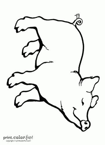 Happy pig coloring page print