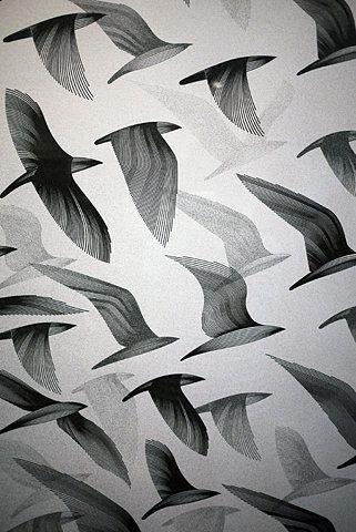 oiseaux-en-vol