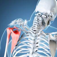 Ortopeda w Medical Fitness