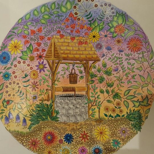 21 Best Johanna Basford Wishing Well Oo Images On