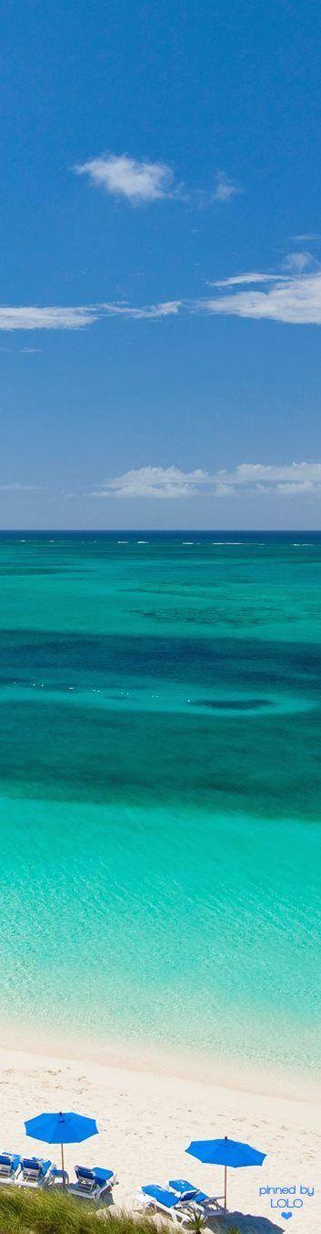 Grace Bay Club Resort, Turks and Caicos   LOLO❤