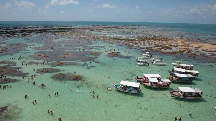 Vista aérea das Galés de Maragogi #Maragogi #Alagoas #Nordeste #Praia #Beach #TropicalBeach #SalinasMaragogi