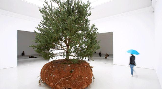 Top 10 des meilleurs pavillons de la Biennale de Venise 2015