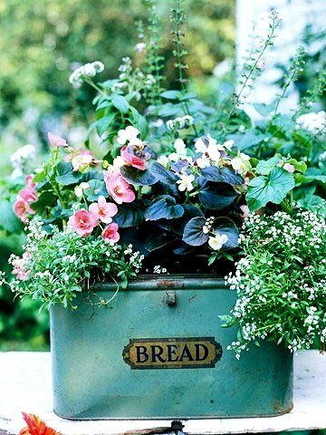 Bread box planter