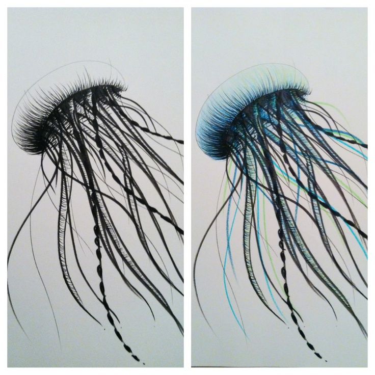 This is a picture of Trust Jellyfish Ink Drawing
