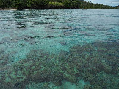 Terumbu karang pulau Gangga di Likupang Barat, Sulawesi Utara.