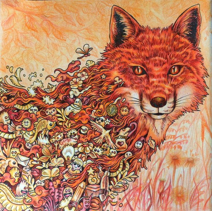 Kerbyrosanes Kerby Rosanes Fox Orange Doodle Animorphia