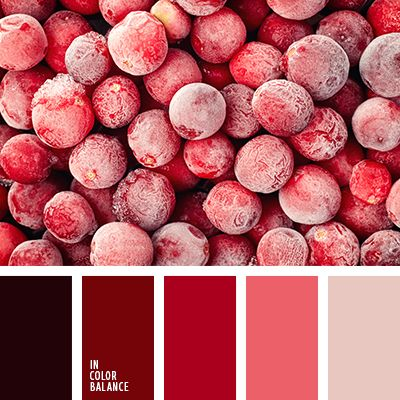 бордовый, бордовый и красный, контрастное сочетание цветов, кораллово-красный, коралловый, насыщенный красный, оттенки красного, теплая цветовая палитра, цвет вина, цвет сангрия, цвета глинтвейна.
