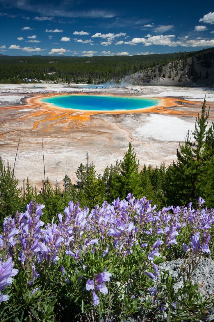 Best US National Parks Things To Do Images On Pinterest - Us national parks yellowstone