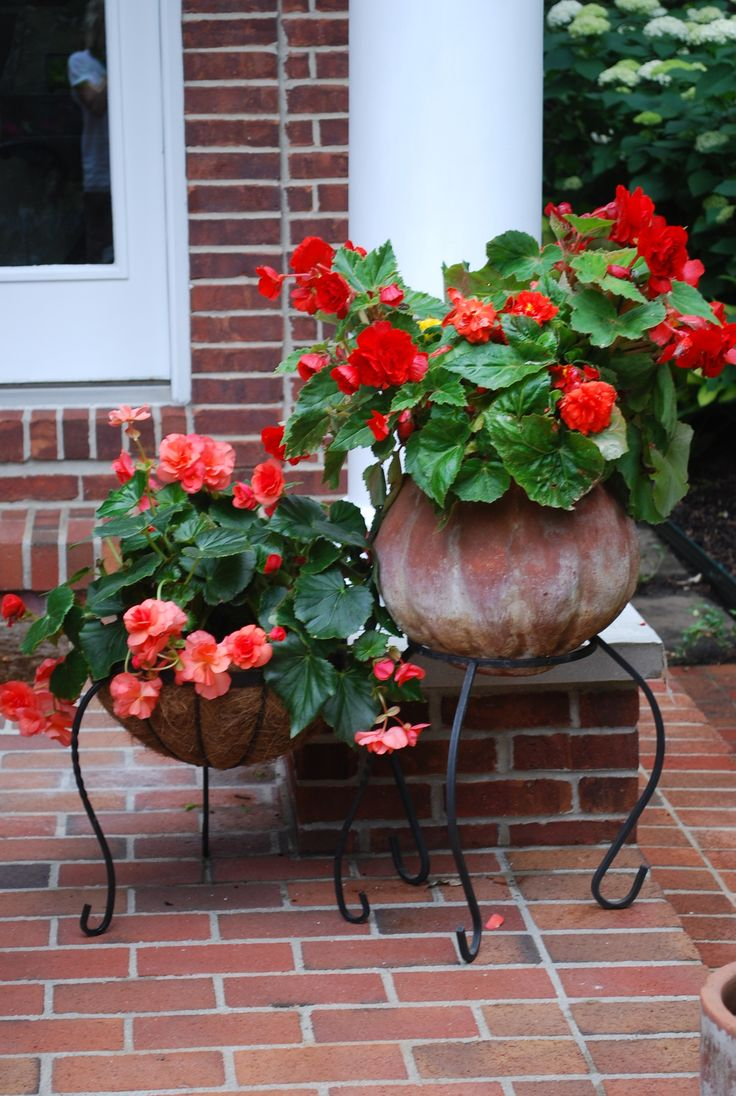 Front porch container gardening ideas - Find This Pin And More On Porch Plants