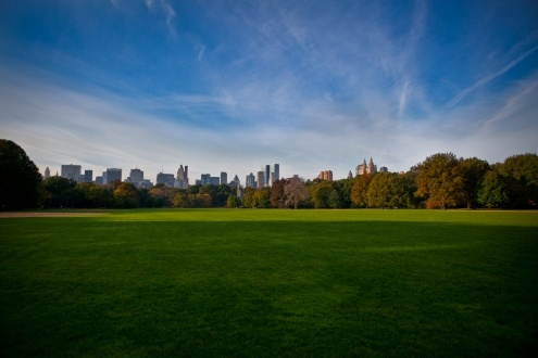 Morning in Central Park, New York. Photo by Edyta.