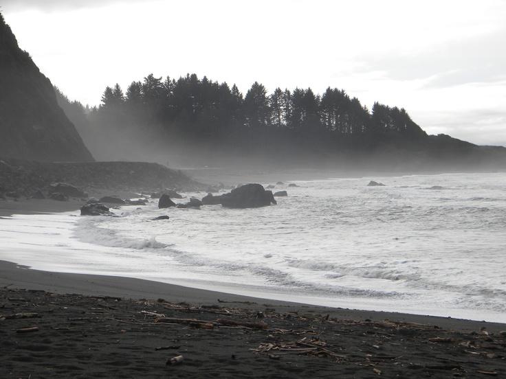 The misty Northern California coast, far superior to the coastline further south.  #california #coast #ocean #waves