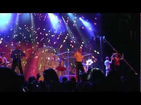 Wiggles concert - Twinkle Twinkle