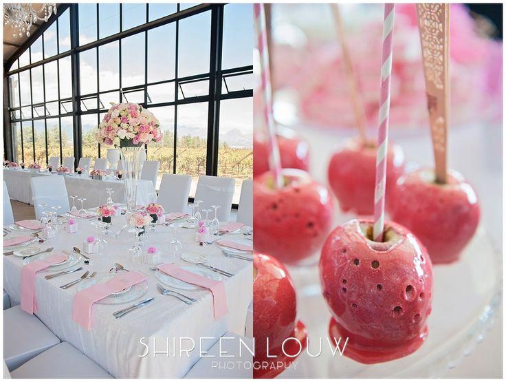 Lucinda and Bledi | Bakenhof Winelands Wedding Venue