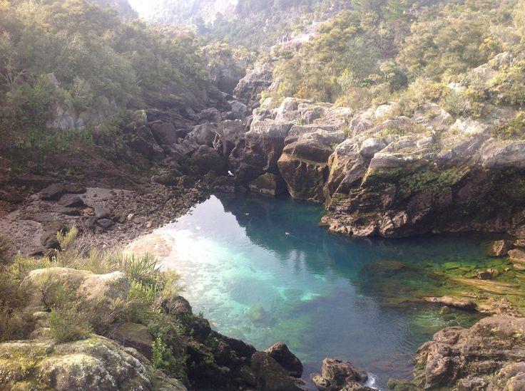 More shots of NZ