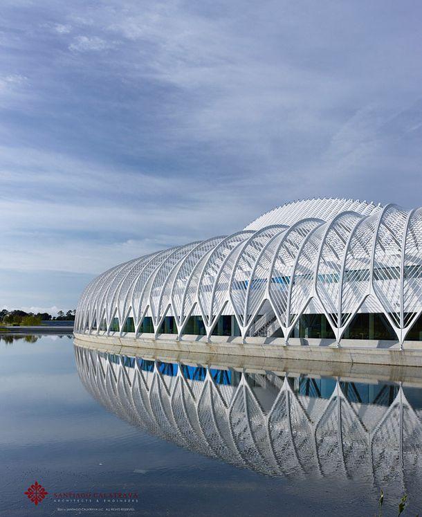 Испанский архитектор Сантьяго Калатрава спроектировал новый политехнический университет Флориды, который стал воплощением фирменного футурис...