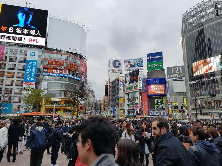 #Shibuya #Tokyo