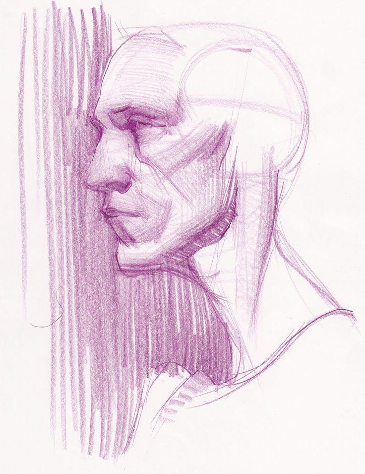 Academic study, Male portrait, purple pencil on paper