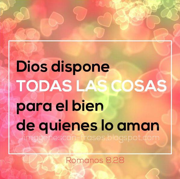 Romanos 8:28 imagen con versiculo