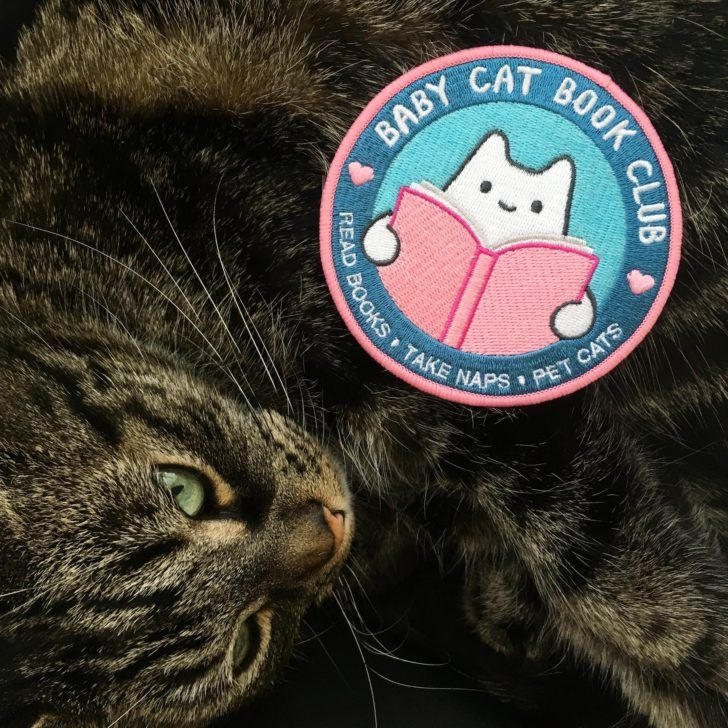 Animal Baby Cat Baby Cat Book Club Iron On Patch 1800x Small Black Siamese Gray First Born Little Blue Eye Persian Sweet Pet Tiny Dog Tiger S Baby Cats Newborn Kittens Kitten