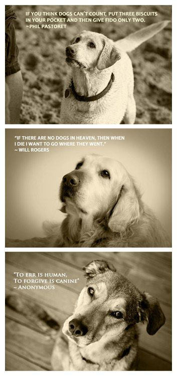 Quotable Canine Collection Three 5 x 7 Prints by MarkJAsher I have his books, he's amazing!