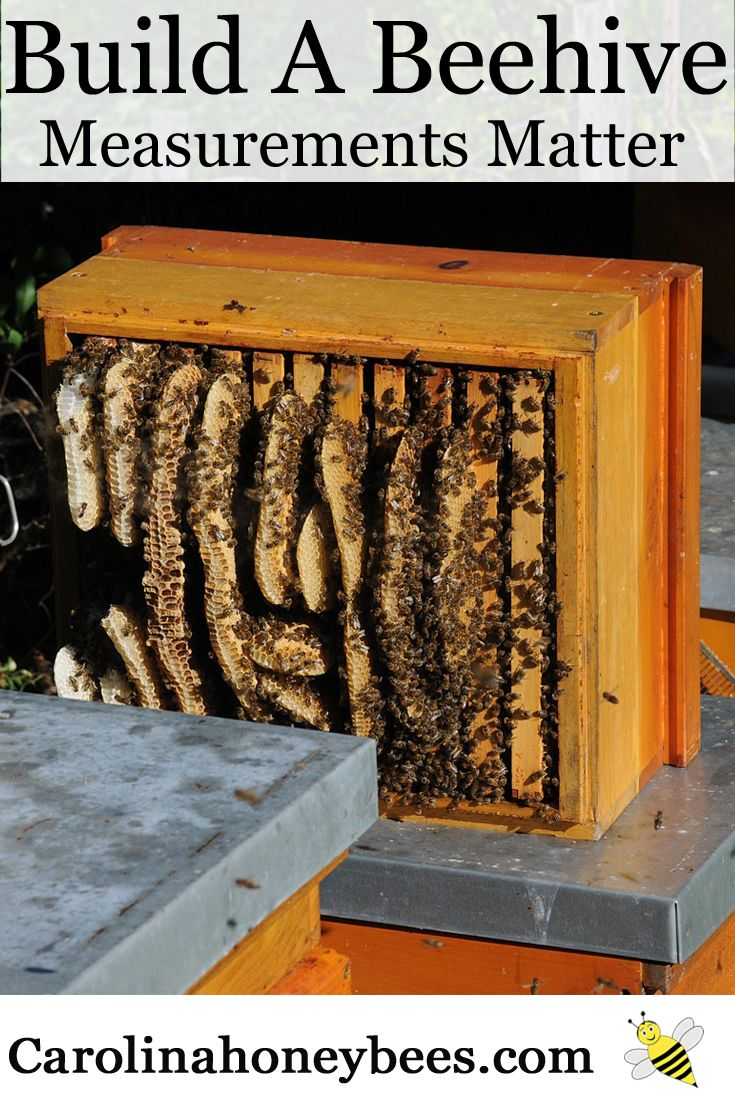 How to make a moisture quilt for a langstroth hive honey - How To Build A Honey Bee Hive