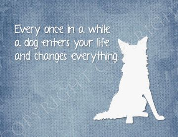 8x10 Art Print - Every once in a while a dog enters your life and changes everything - Memorial- Border Collie Silhouette Art. $17.00, via Etsy.
