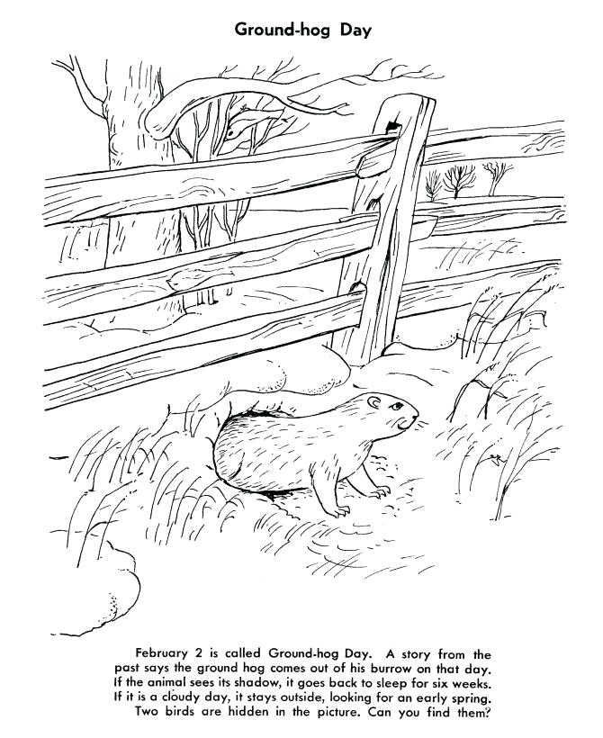 Groundhog Day Worksheet To Color Groundhog Coloring Pages Preschool Groundhog Day Groundhog Day Activities Coloring Pages