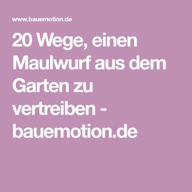 20 Wege, einen Maulwurf aus dem Garten zu vertreiben - bauemotion.de