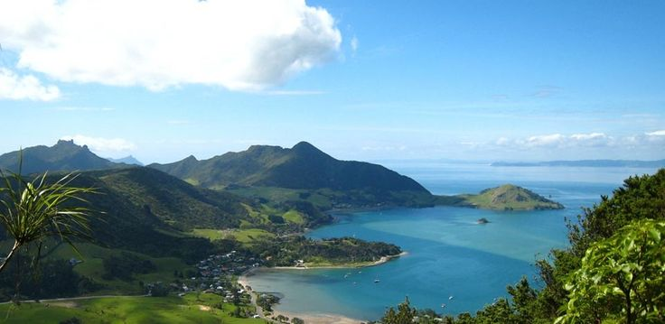 View from Mt Manaia, overlooking Whangarei Harbour. LOVE IT HERE
