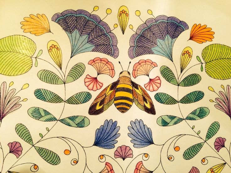 Animal Kingdom Colouring Book Bird 137 Best Millie Marotta Animal Kingdom Images On Pinterest