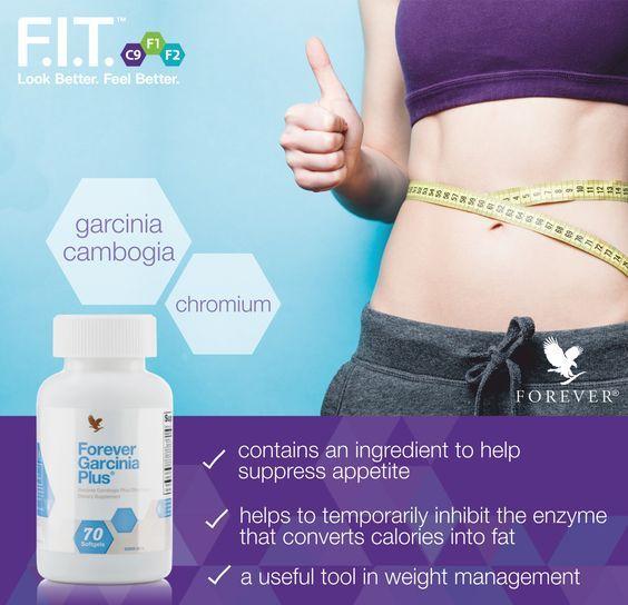 Transform or lose fat photo 7