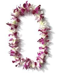 Single Strand White and Purple Orchid Lei- this is what my lei looked like at my wedding.