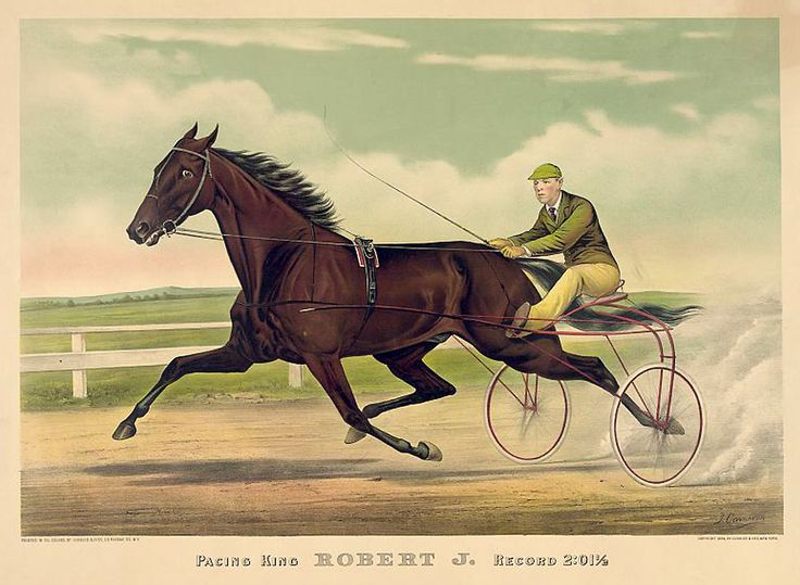 https://flic.kr/p/dXJxnP | 020-Imagen carreras caballos trotones-Library of Congress | www.odise2008.com Cortesía de: Library of Congress Referencia post: www.odisea2008.com/2013/02/carreras-de-trotones.html