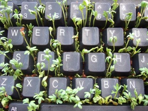 Finally, something to do with that old broken keyboard...  Now, let's see the one with the broken monitor ;-D