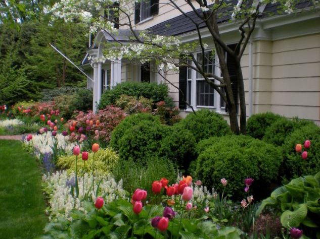 When Choosing Plants Aim For 50 Evergreens 25 Deciduous Or Flowering Shrubs And 2 Front House Landscaping Foundation Planting Front Yard Landscaping Design