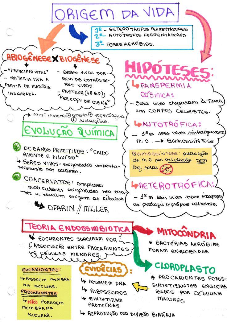 Blog sobre vestibular de medicina