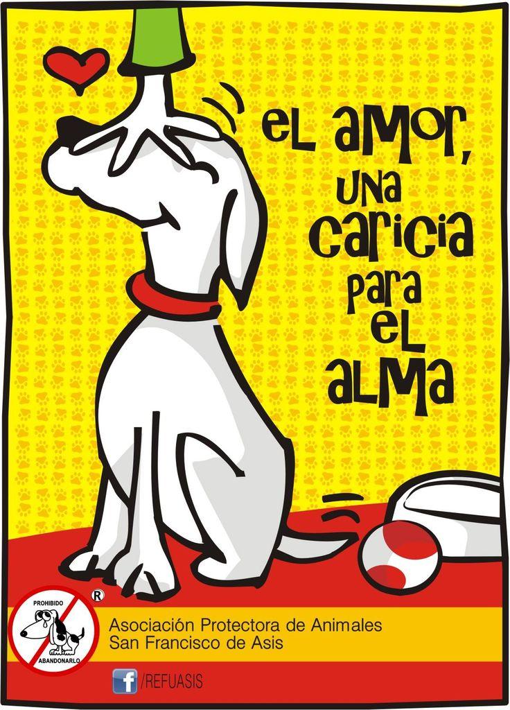 https://www.facebook.com/Refuasis #adopcion #perros